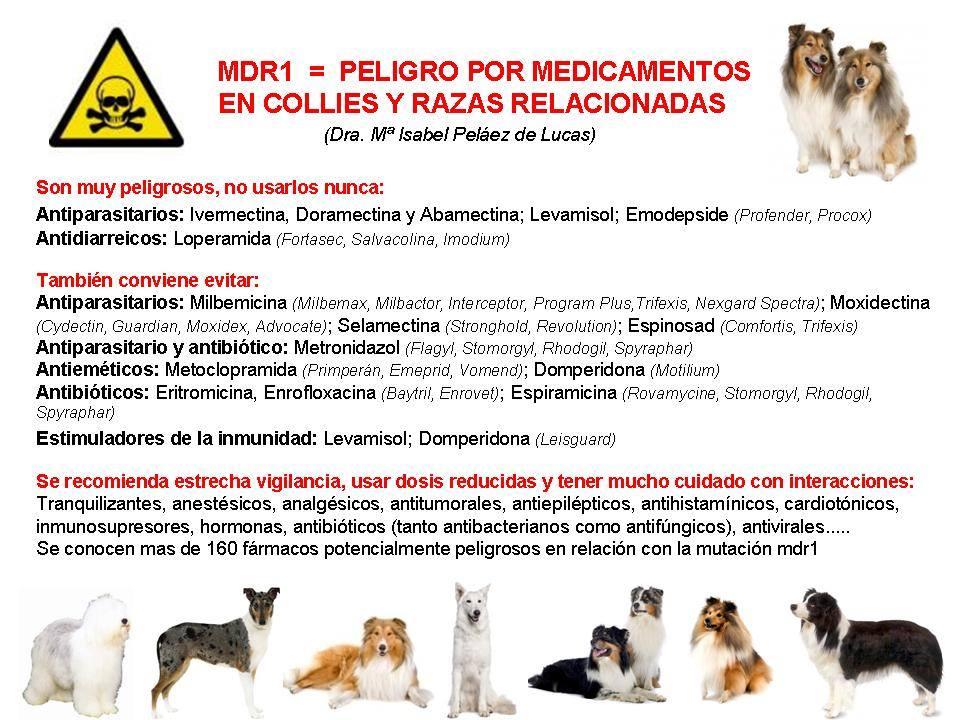 peligro_mdr1